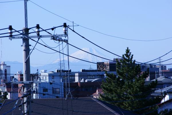 fuji2009.jpg